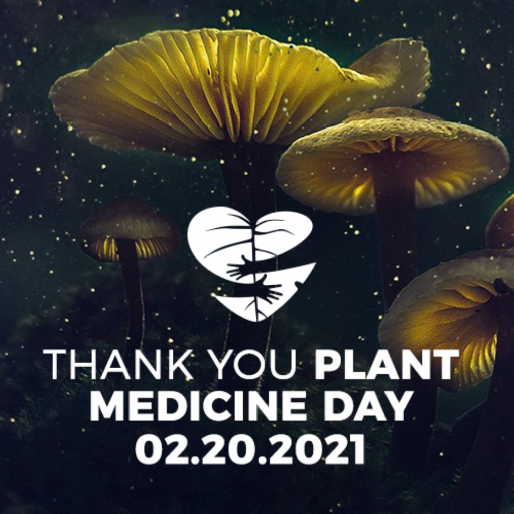 Thank You Plant Medicine Day – TheraPsil Blog